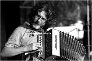 Donatello Pisanello (OFFICINA ZOE'), diatonic organ on track 14